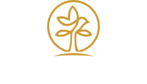 Abundance Wealth Planning, LLC